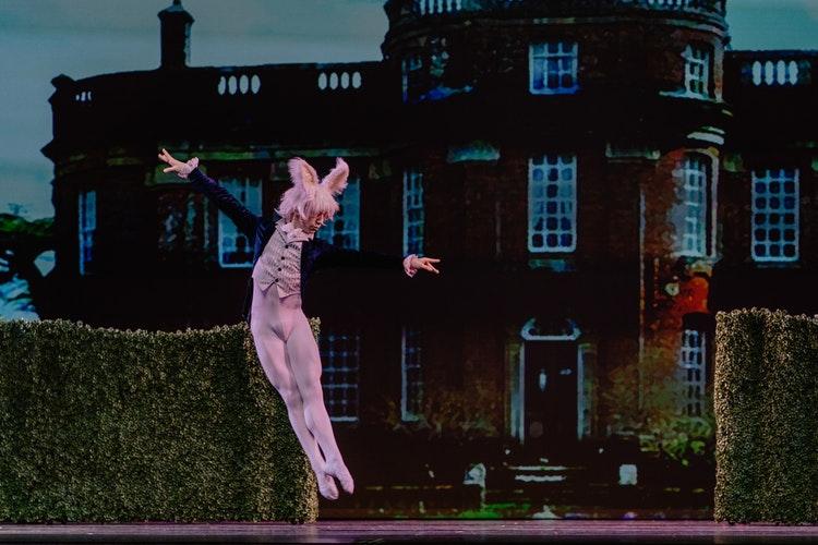 Hombre bailarín con traje de conejo rosa