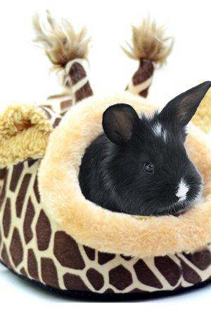 camas y nidos para roedores, conejos y animales pequeños