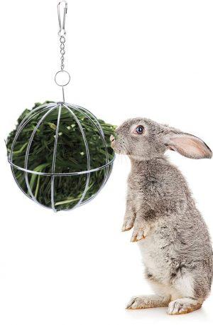 pelota de hiervas para mascotas dispensador de comida para animales pequeños