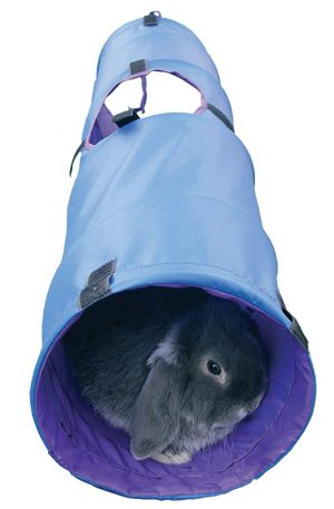 túnel de actividades para jugar para pequeños animales como conejos