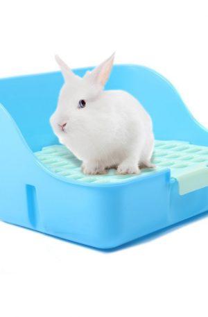 Caja de arena para jaulas de conejo
