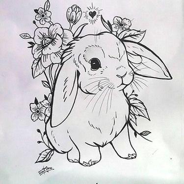 imagen-de-conejo-colorear