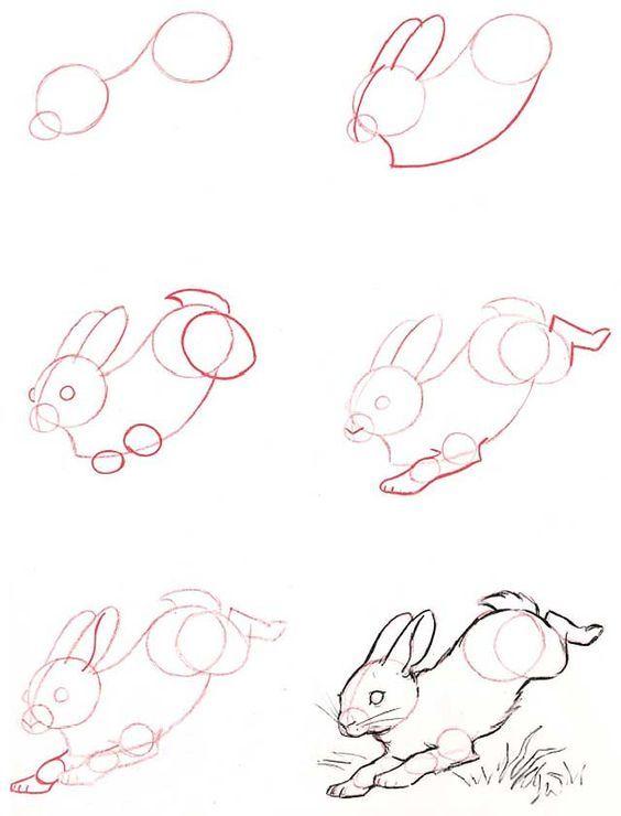 dibujos-de-conejos-paso-a-paso
