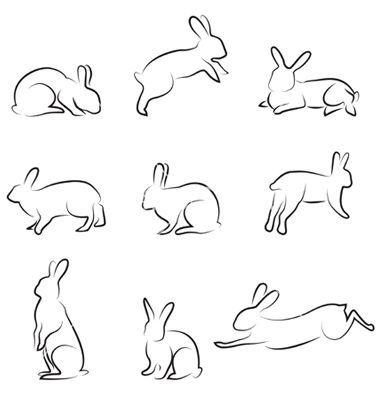 dibujar-conejo-en-movimiento