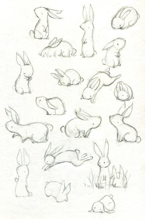 dibujos-de-conejos-facil