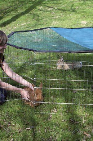 parque galvanizado para conejos rejas