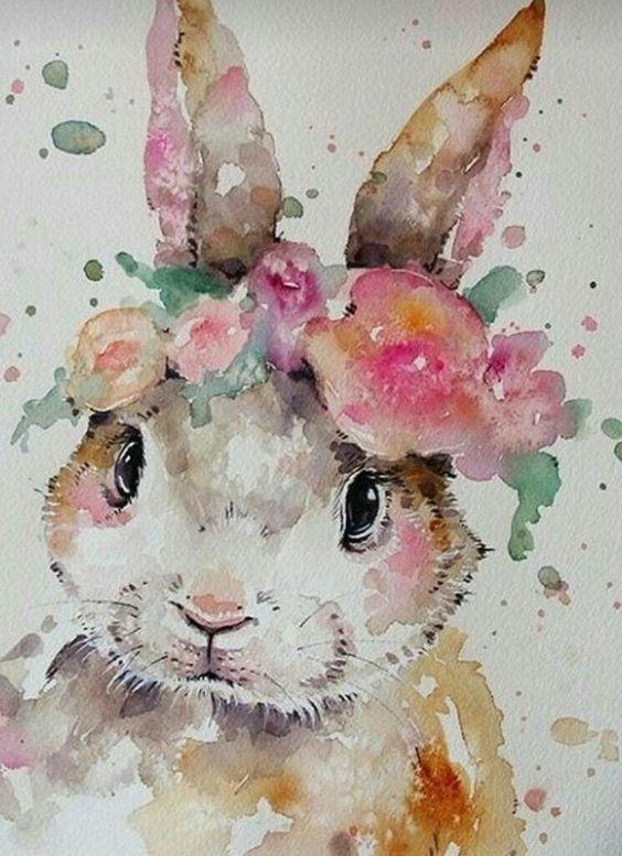 imagen-conejo-acuarela