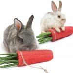 zanahoria de juguete para conejos ideal para masticar